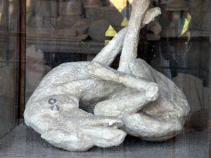 cane pietrificato, Pompeii