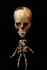 Remains of a pregnant woman and fetus killed by Mount Vesuvius' ash.