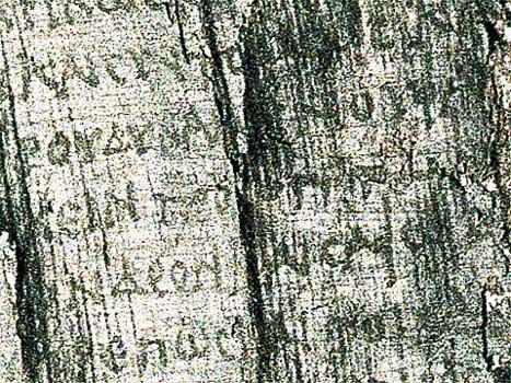 olvashatóvá tett papírusz 55