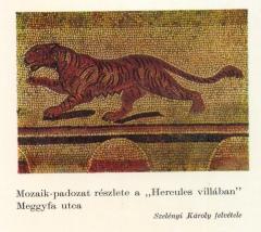 Óbuda, Hercules villa, mozaik