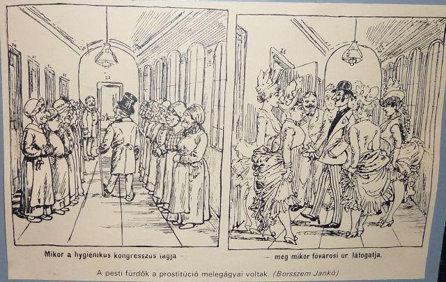 Borsszem Jankó P1100373