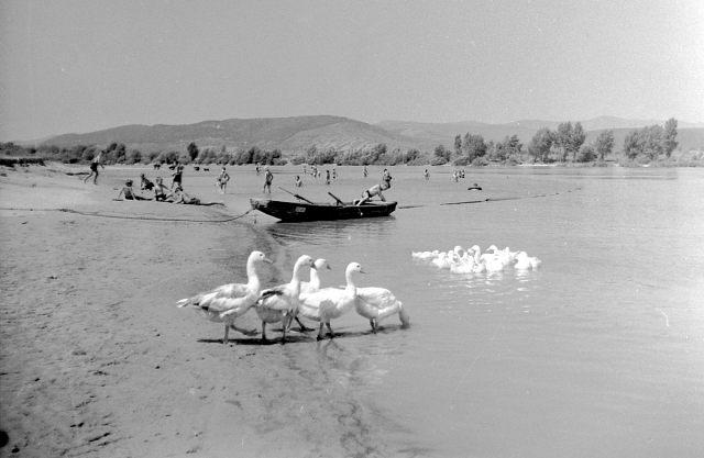 nyári idill a Duna partján 1935