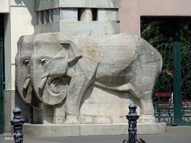 2008.05.27.Állatkert bejárat.elefánt 031k