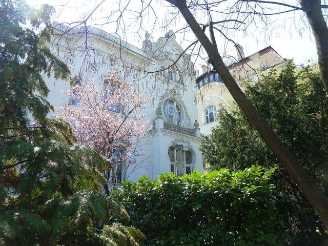Fasor Wodianer ház P1290369
