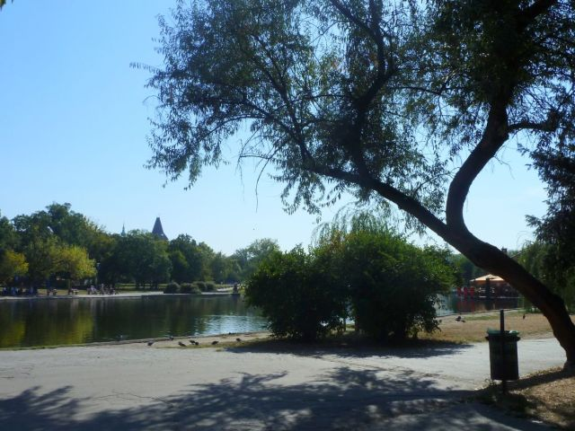 Városliget 2011.09.26.Állatkerti út 022