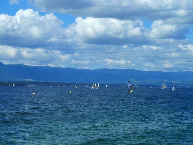 Genfi tó, június P1320465