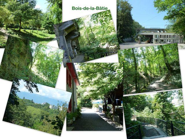 Bois-de-la-Bâtie kollázs