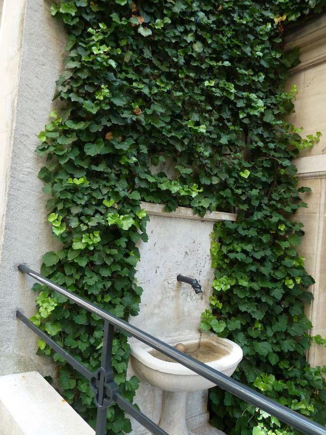 Genf, P1360937 Rue de Cocq