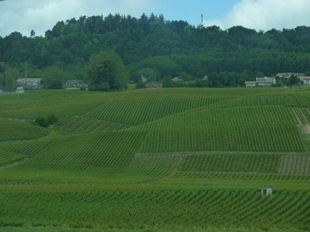 Genfi tó mellett, úton Bernbe P1320554