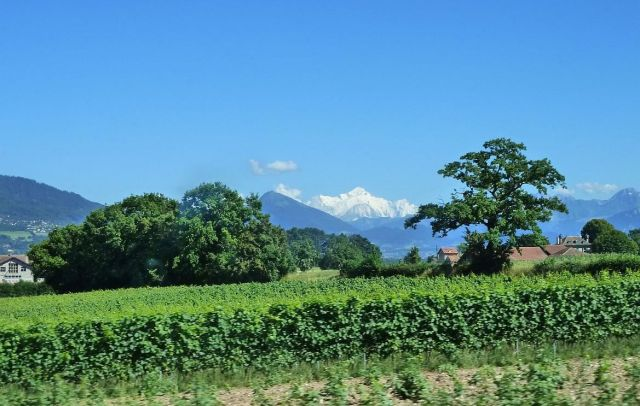 Mont-Blanc a buszból P1350874
