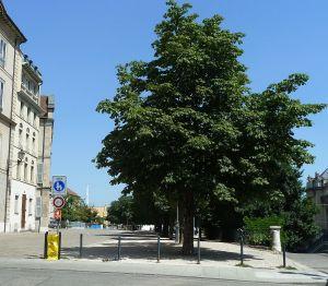 P1360923 Liszt tér- pom. de St. Antoine