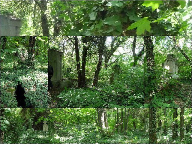 Cinkotai öreg temető kollázs