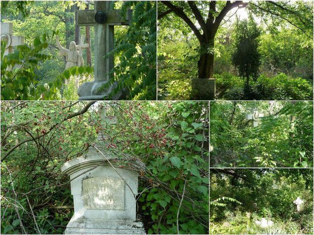 Szentmihályi temető -kollázs