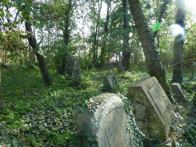 Szentmihályi temető P1390687