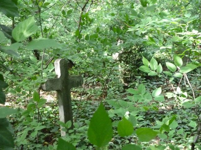 Cinkota P1380773 öreg temető