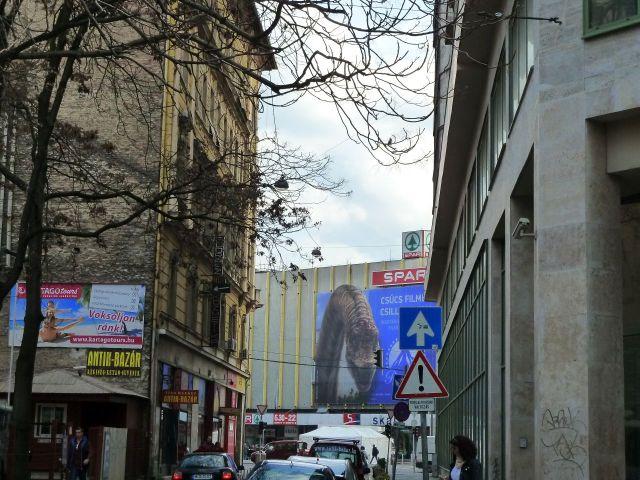 Klauzál utca P1430536