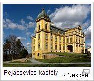 Pejacsevics_kastély-_Nekcse