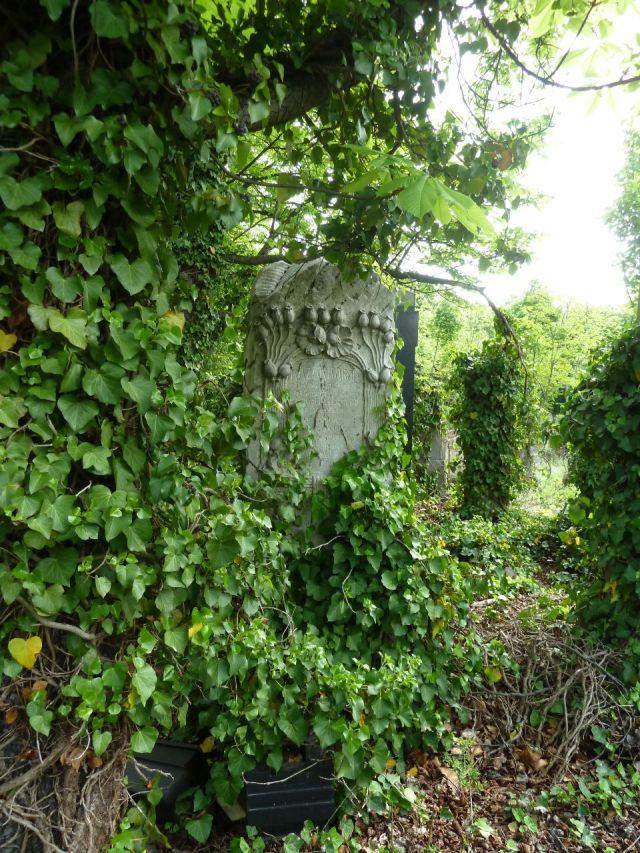 Kozma utcai temető 2014.május P1450186 Kazár Károly 1915