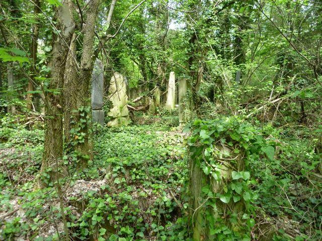 Kozma utcai temető 2014.május P1450200