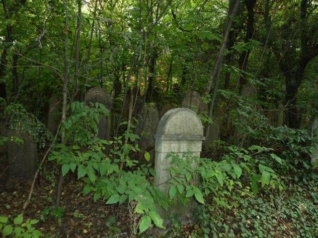 Salgótarján u. Zsidó temető P1400042 2013.10.06.