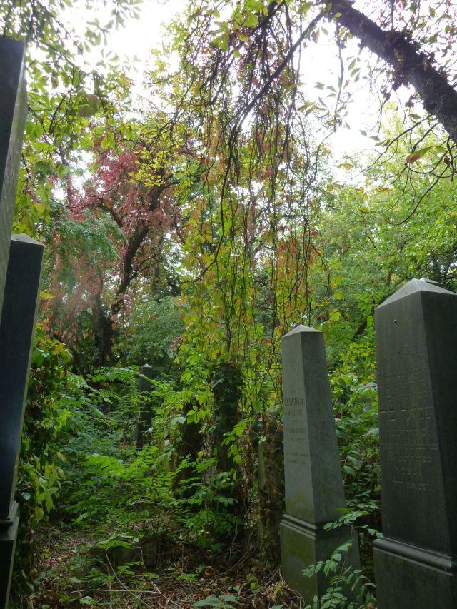 Salgótarján u. Zsidó temető P1400069 2013.10.06.