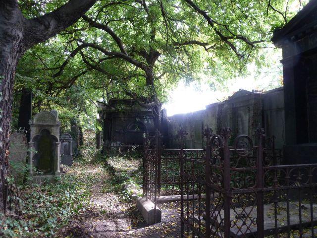 Salgótarján u. Zsidó temető P1400141 2013.10.06