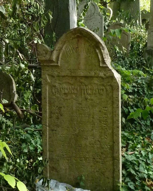 Salgótarján u. Zsidó temető P1400162 2013.10.06.