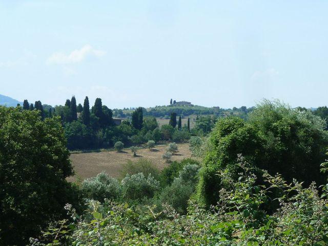 2014 nyár P1470171 Toscana