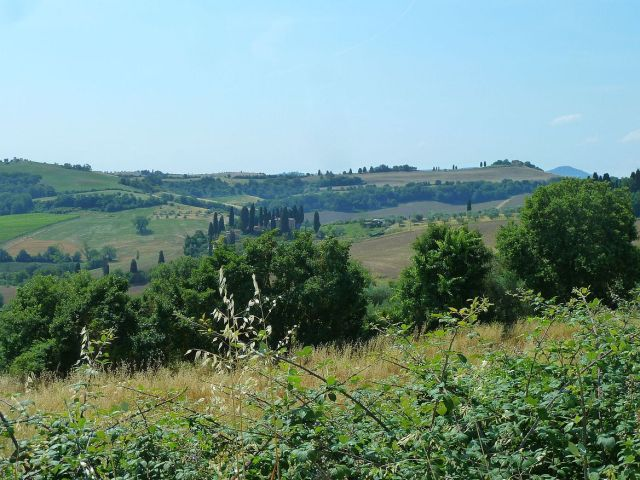 2014 nyár P1470173 Toscana