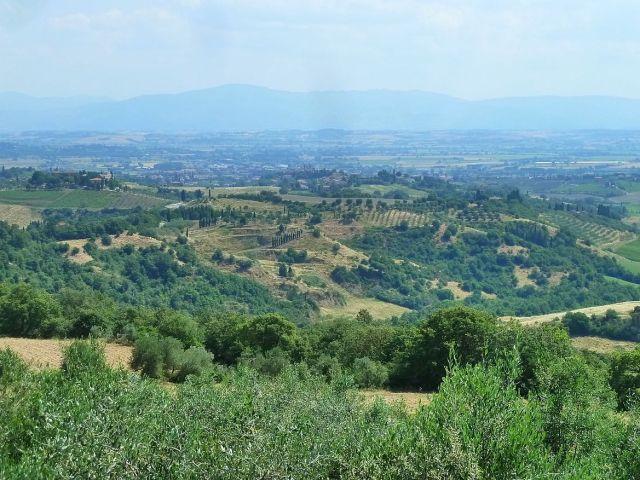 2014 nyár P1470181 Toscana