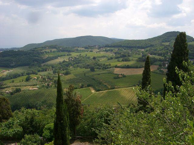 Montepulciano CIMG4981 Mari