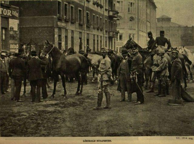 I. Világháború képekben, 1914 -lósorozás