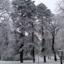 Jókai-kert
