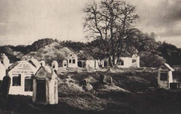 oreg-temeto-pioromont-alapitva-1487-jan-bulhak-5732-1330628246_b1