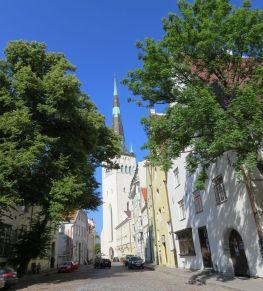 Tallinn IMG_7957 Gyö Lai, Oleviste