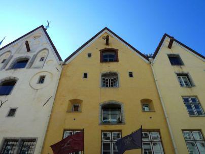 Tallinn P1650492 Pikk Jalg Három Nővér