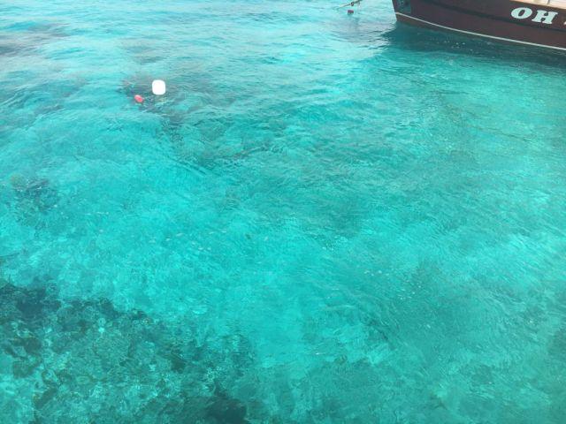 Málta IMG_5073 Zsu - Kék Lagúna