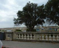 Málta P1670287 Valletta