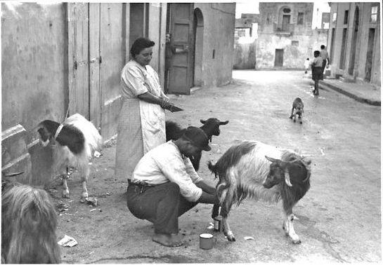 1930-s, Zurrieq, tej házhoz megy