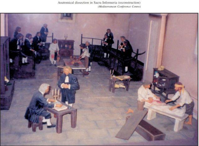 Anatómiai boncolás_Sacra Infermeria - rekonstrukció Mediterrán Konferencia Központ