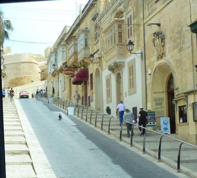 Gozo P1690351, Victoria
