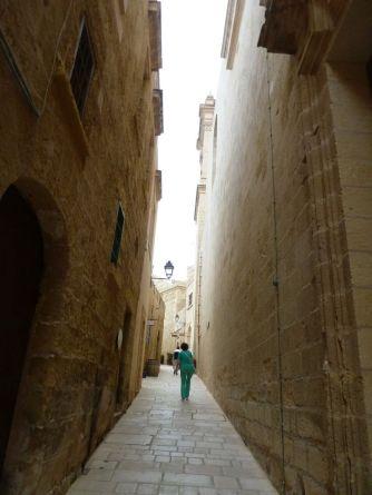 Gozo P1690542, Cittadella
