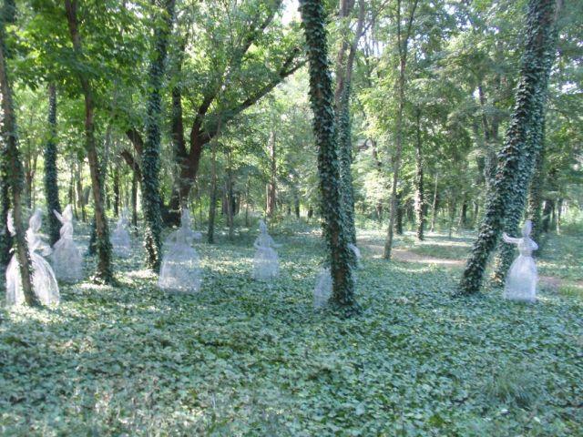LandArt- Debreceni Nagyerdő P7173185 fotó AAnna