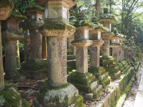P5154883 Nara, Kasuga Taisha