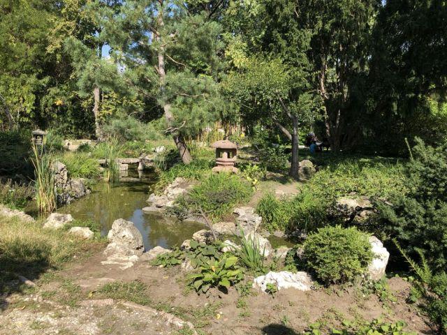 Zugló - japánkert IMG_4630
