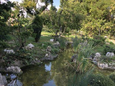Zugló - japánkert IMG_4644