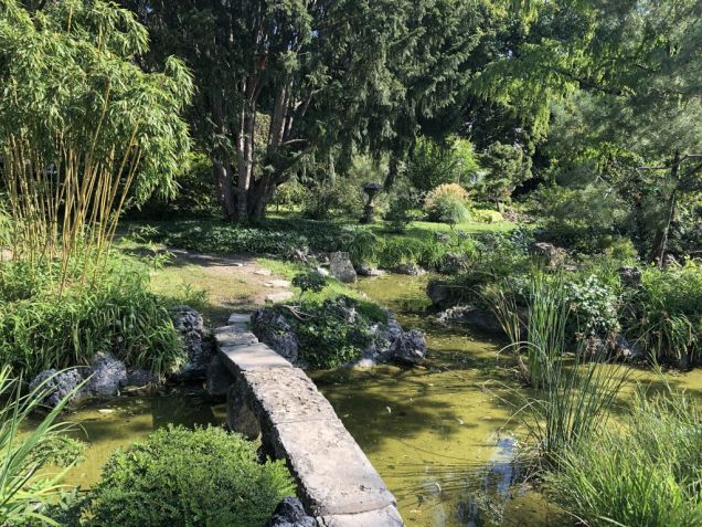 Zugló - japánkert IMG_4665