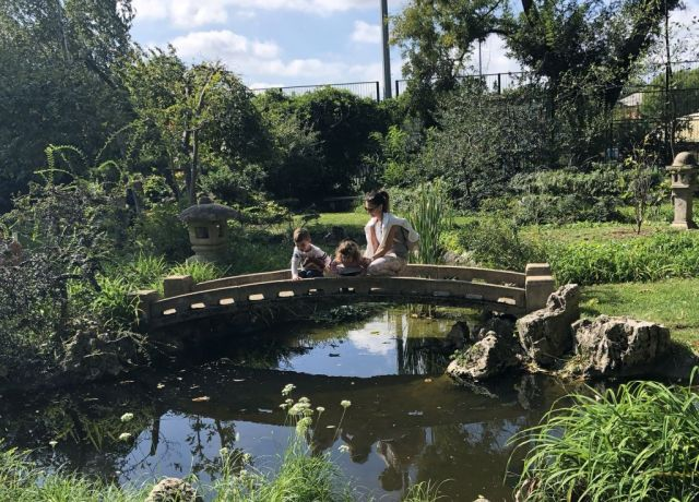 Zugló - japánkert IMG_4681