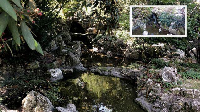 Zugló Kertészet, Japán kert- forrás