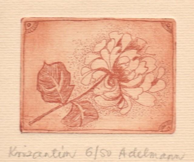 Adelmann Anna - Krizantém